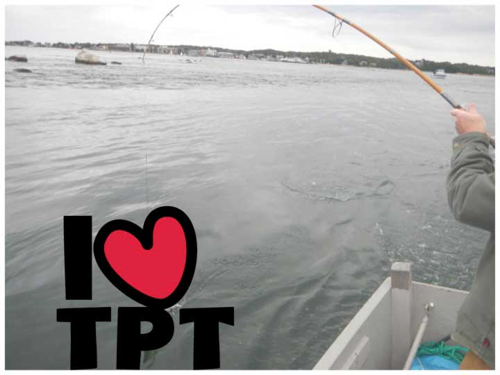 "Photo of a fishing line cast into water with ""I Heart TpT"" overlaid"