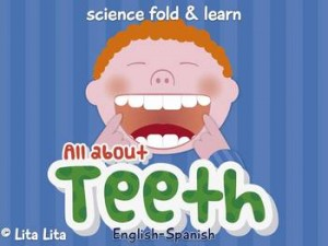 All About Teeth