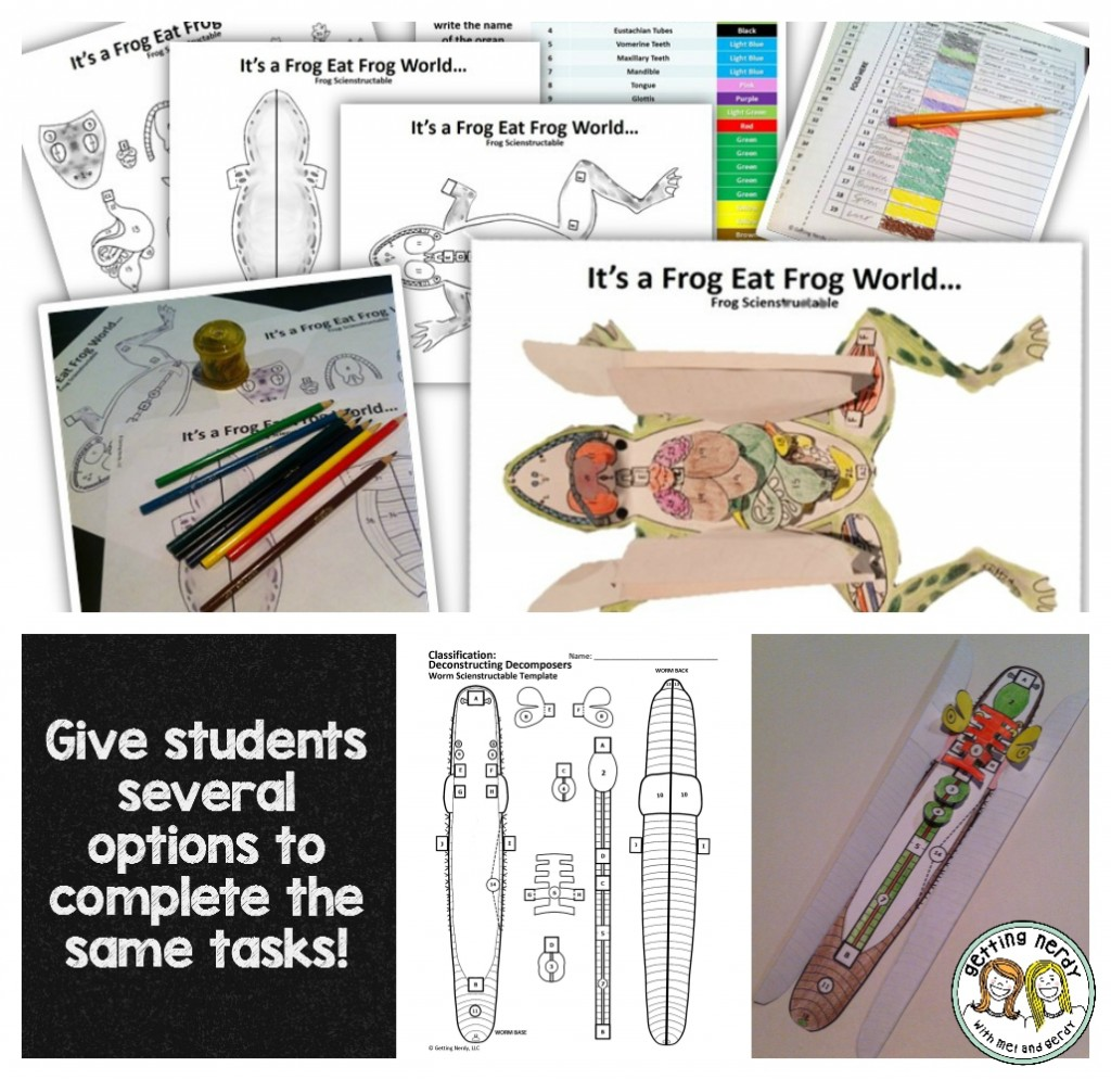 Science Interactive Notebook - 3-D Frog Dissection Model for Human Body