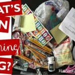 What's in My Teaching Bag?