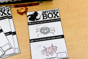 Drawings with labels of what students think is in the mystery box.