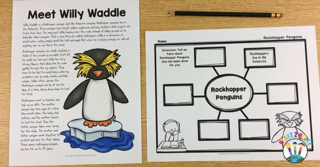 Providing your students with real or relatable examples that bring the lesson to life help reinforce their learning. In this example, we've personified a penguin (Willy Waddle) with information about his life and habitat, and included a diagram for students to fill out facts about the type of penguin Willy Waddle is (Rockhopper Penguin)