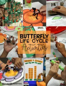 Butterfly life cycle activities and FREE printables for YOUR classroom!