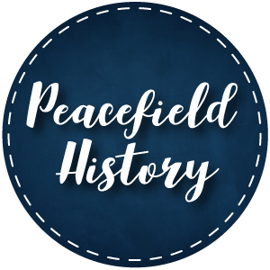 Peacefield History: Teachers Pay Teachers