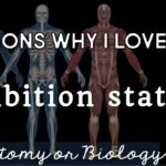 Why I Love Using Human Body Systems Exhibition Stations in the Classroom