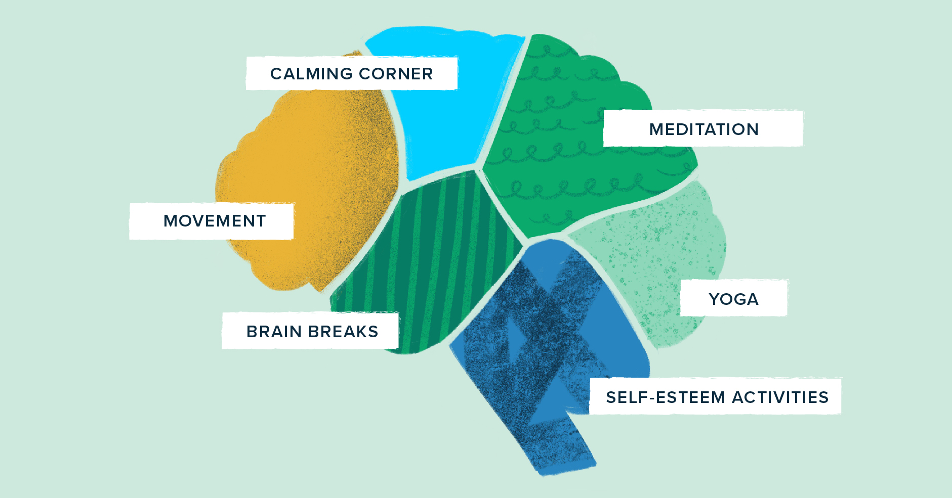 illustration of a brain divded into six parts that are labeled as calming corner, meditation, yoga, self-esteem, brain breaks, and movement